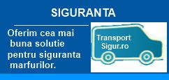 flexibilitate servicii transport